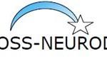 Progetto Stefania Corti - CDF malattie neurodegenerative-1